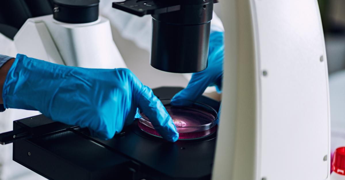 No Ano Da Pandemia, Neurolife Consolida Vocação Em Pesquisa E Expande Atendimento