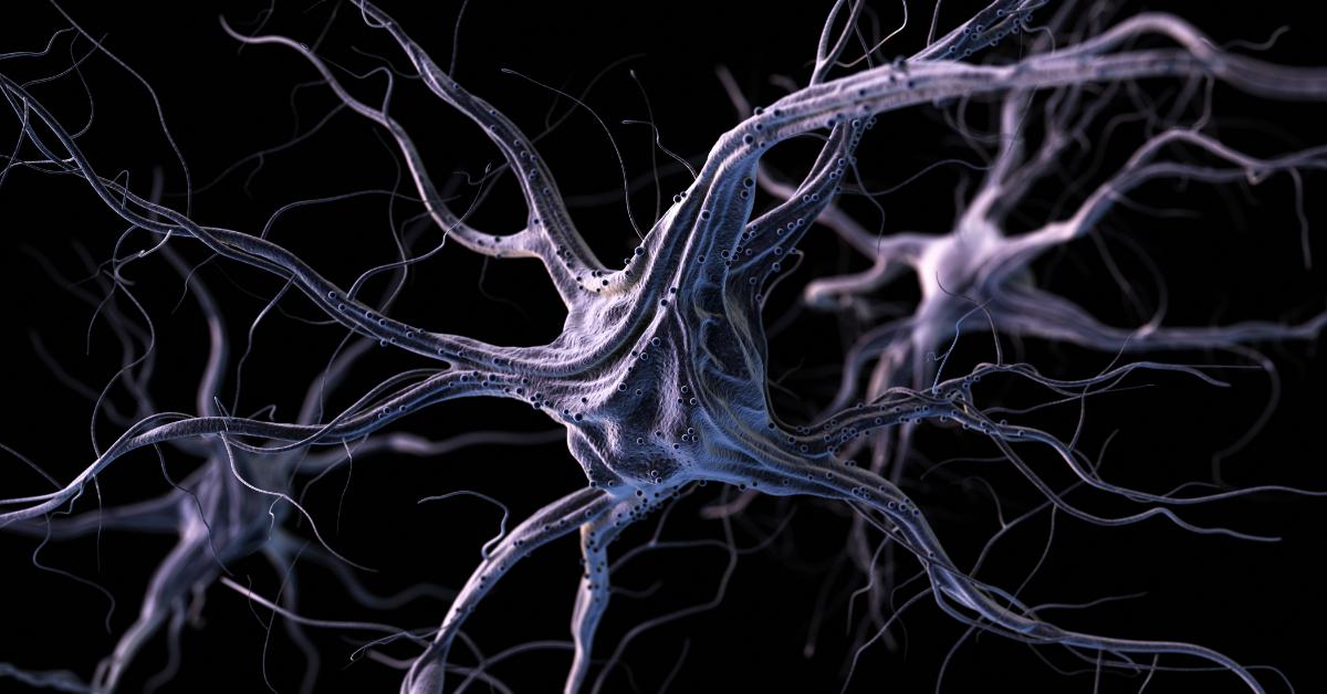 Diagnóstico Esclerose Múltipla